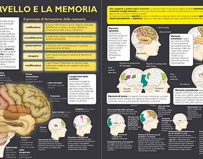 Infografica - Infographics