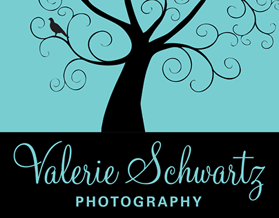 Valerie Schwartz Photography Logo & Business Cards