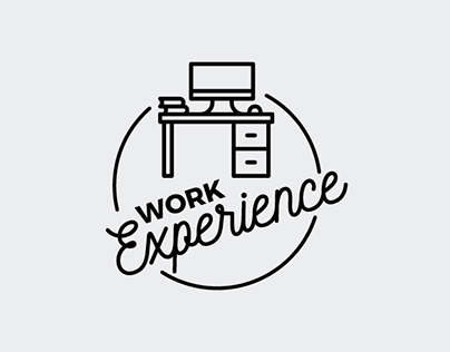 2018 - Work experience