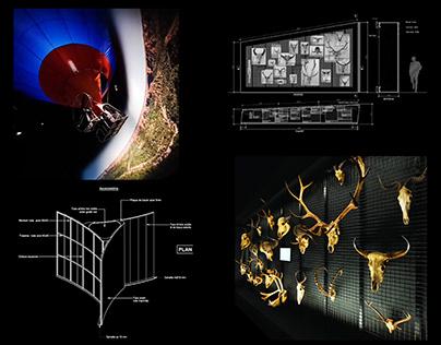 (2019-2020) [Exposition] Makay & Taces du vivant