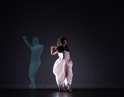 The Twelve Brothers—A Multimedia Ballet