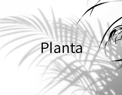 Planta Luxury Resort