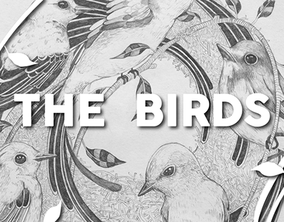 The Birds (Personal project)