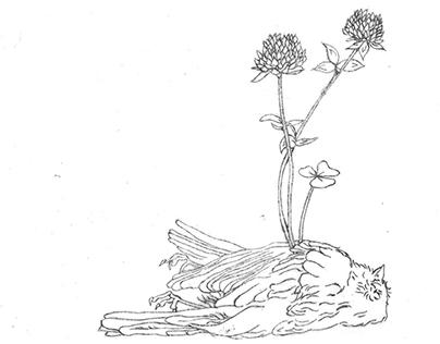"""Lucky Clovers"" - Illustration"