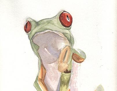 Frog in watercolor