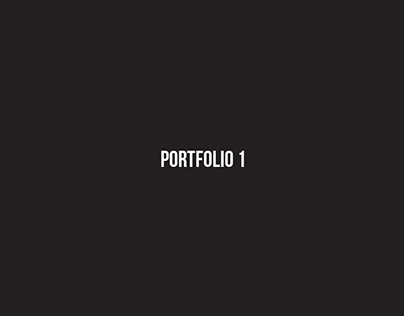 PortfolioGWDA209  Portfolio I