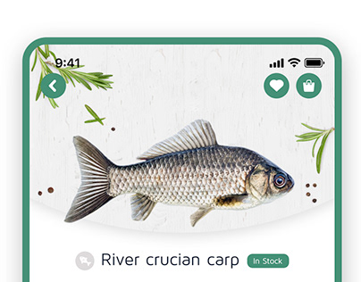 Online Fish Store App Design