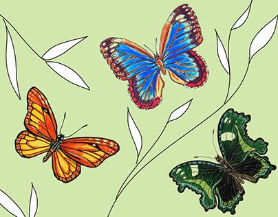 """Postcards """"Butterflies"""""""