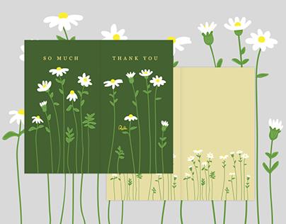 Long Legs Wild Flowers Daisy