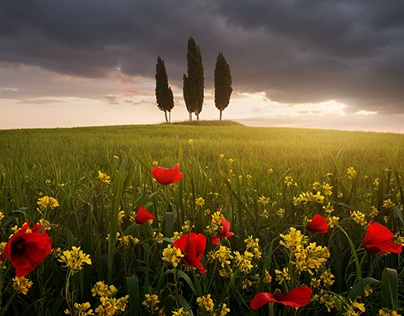 Magic Tuscany II