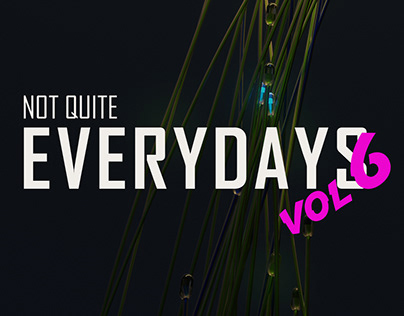 Not Quite Everydays Vol 6