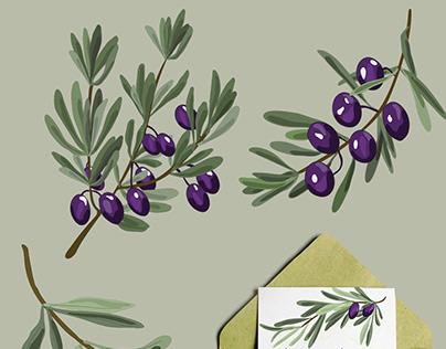 Planche 5 dessin vectoriel olivier