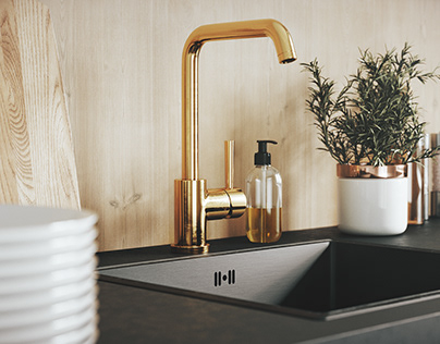 Tapwell sink & faucet