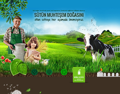 Sutas Dairy Products Corporate & E-Commerce Web Site