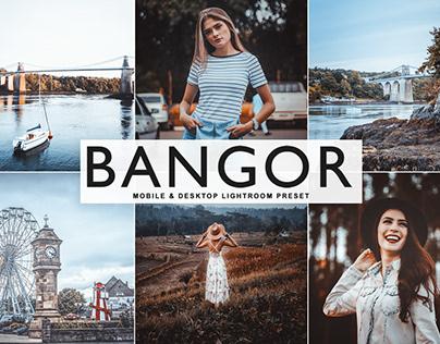 Free Bangor Mobile & Desktop Lightroom Preset