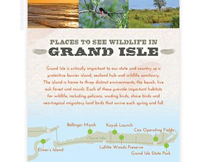 Lafitte Woods Nature Preserve and Trail - Grand Isle