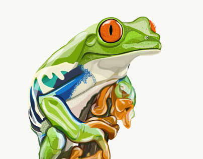 Illustration: Tree Frog