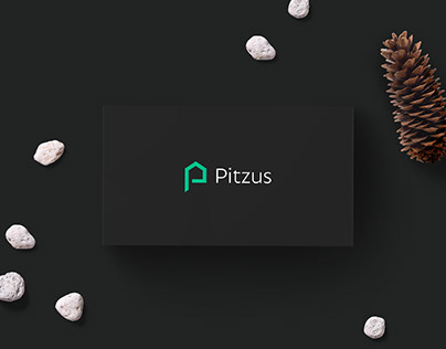 Pitzus - Rebranding & Visual Identity