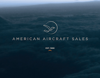 American Aircraft Sales: Branding and Web Design
