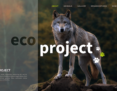Eco Project - UI design