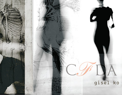 CFDA Project