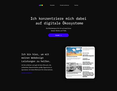 professional web designer website