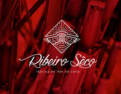 RIBEIRO SECO Cane Honey Factory
