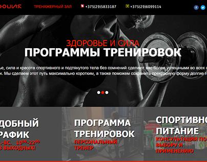 www.evolution-gym.by - Belarus, Borovaya (2016)