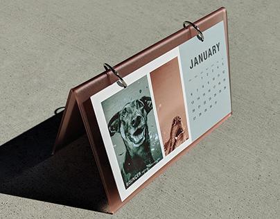 Dogs of Delano 2018 Calendar