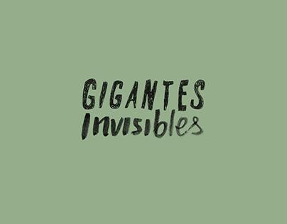 Fanzine Gigantes Invisibles