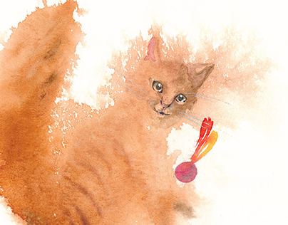 Red cats, fox and rupicola
