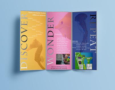 Shedd Aquarium Brochure