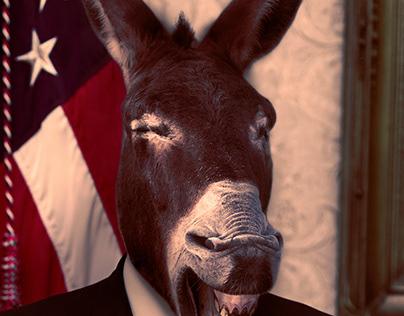 Donkey President