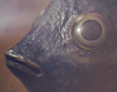 Fish mask