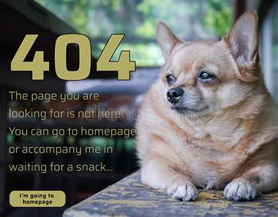 """#008 DailyUIChallenge """"404 page"""" for chihuahua breed"""