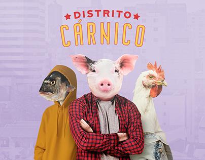 Distrito Cárnico