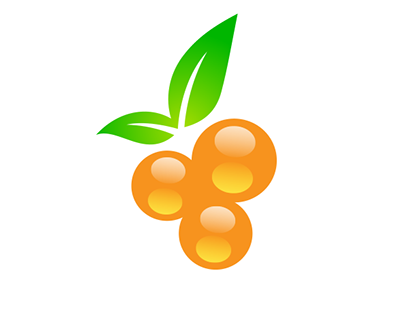 Orange Orchards - Branding