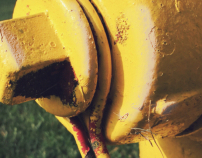 Hydrant:  Icon