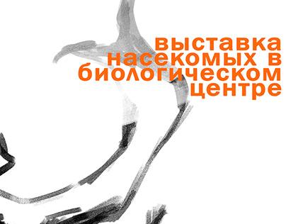 Дизайн рекламных плакатов для выставки насекомых