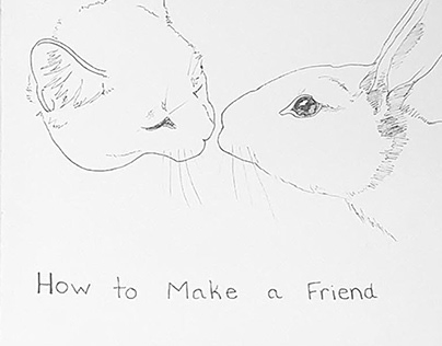 Book: How to Make a Friend