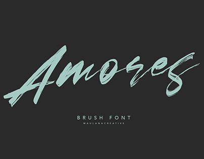 Amores Brush Signature Handmade Font Typeface