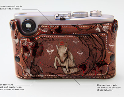 Painted leather Leica camera case. (+video)