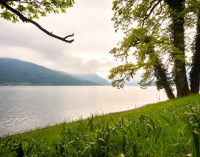 Park & Lake