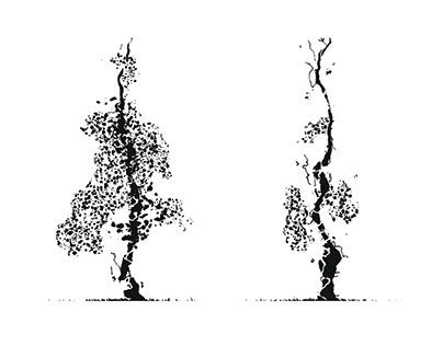 Generative Trees