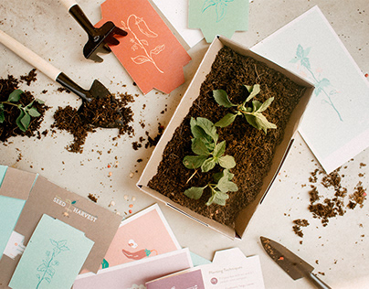 Seed to Harvest - Mailer to Seed Box