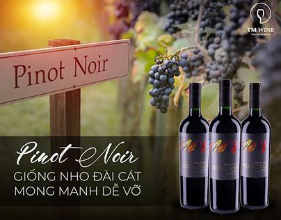 Nho Pinot Noir có làm nên rượu vang ngon nhất thế giới?