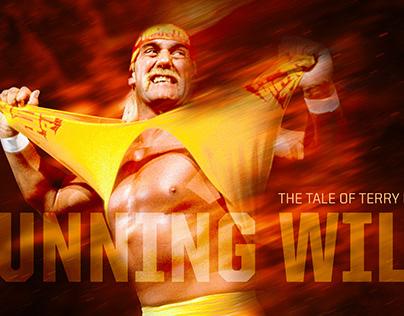 Hulk Hogan Documentary Pitch Deck