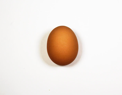 Egg Tutorial