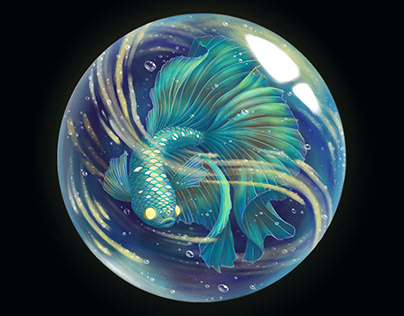 Betta Fish: World Within A Marble