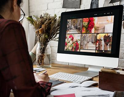 verdarte   web design   web developement